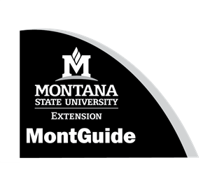MSU Extension CC logo blue and gold