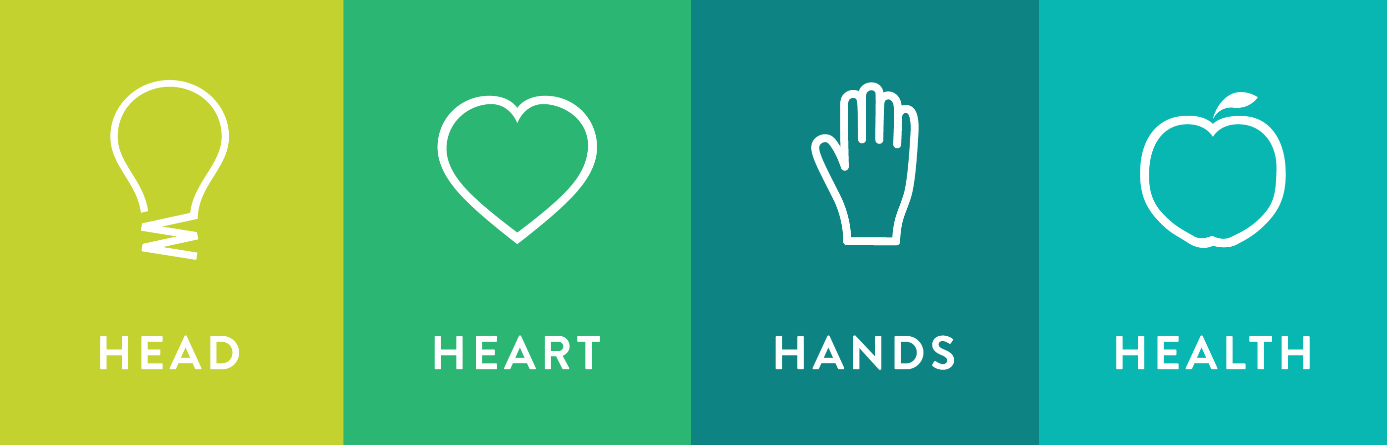 4-H icons, Head, Heart, Hands, Health